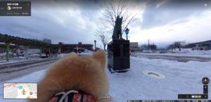秋田犬の 目線から見た風景の 写真